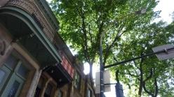 Looking up Montreal street, Avenue du Parc, Apartments