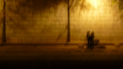 Couple along the scene, blurry
