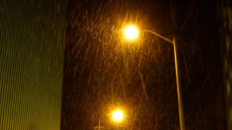 Street lights through snow