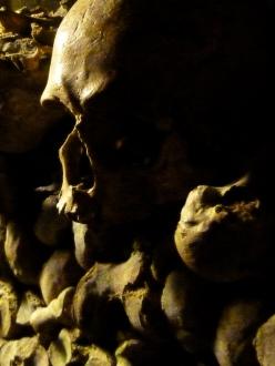 Parisian Catacomb Skulls