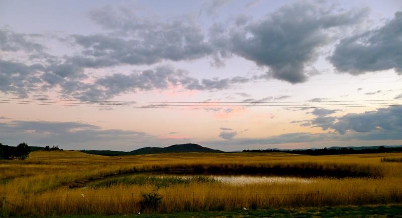 Crace Nature Reserve Grasslands Canberra