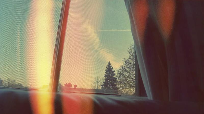 Looking out windowsill Ottawa