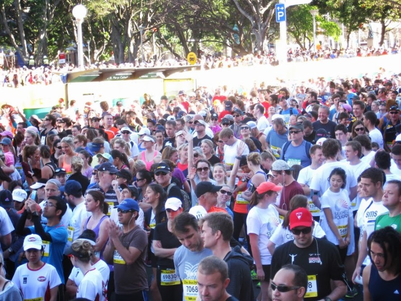 City2Surf crowd waiting to start 2013