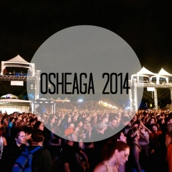 Osheaga music festival at night