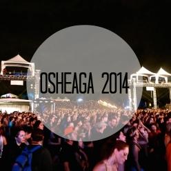 Osheaga music festival at night