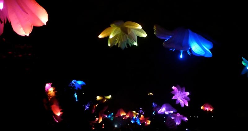 Triffid Garden Night Fest Floriade Canberra