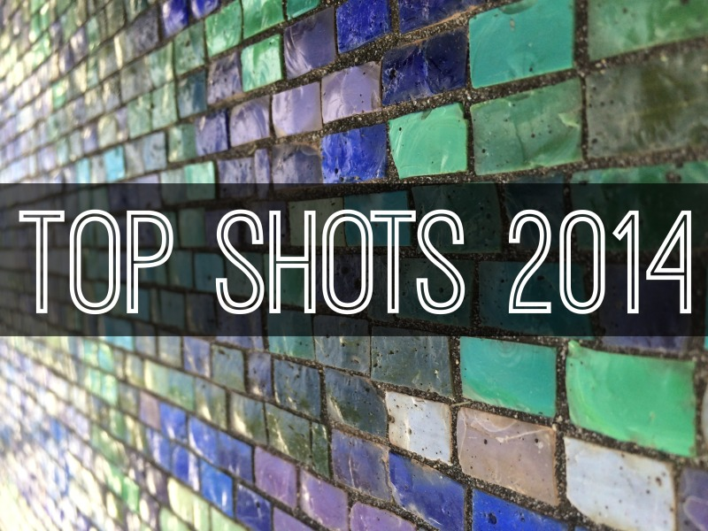 Top Shots 2014